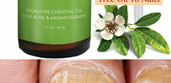how to apply tea tree oil to nails