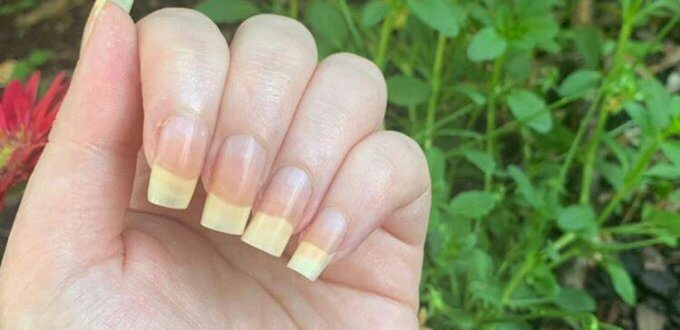 nail stories of brie