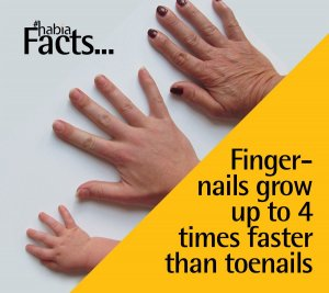 Why Does The Middle Finger Nail Grow The Fastest, why is the middle finger the fastest growing nail