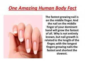 Why Does The Middle Finger Nail Grow The Fastest