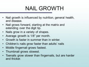 Do Nails Grow Faster In Summer